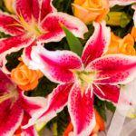Лилия в свадебном букете