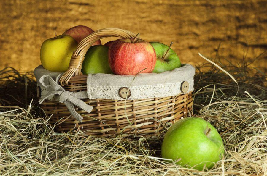 Сохранение урожая зависит и от сортировки плодов