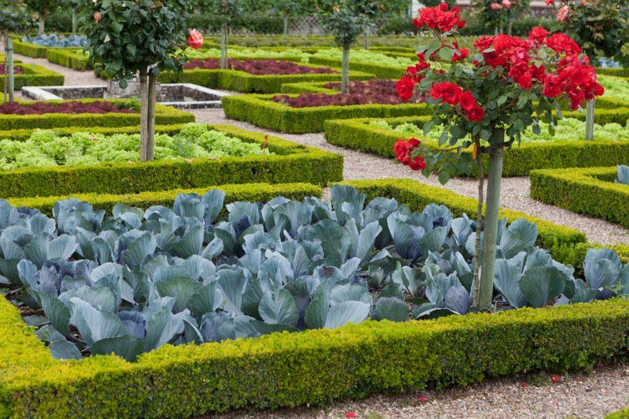 Пример французского огорода