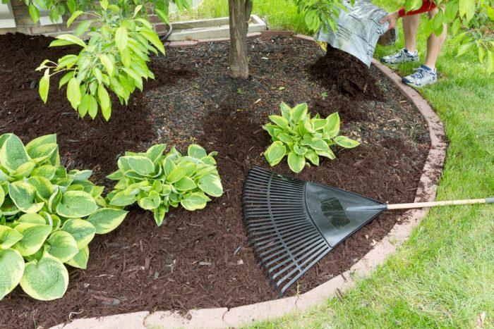 Мульчирование - агротехнический способ улучшить почву