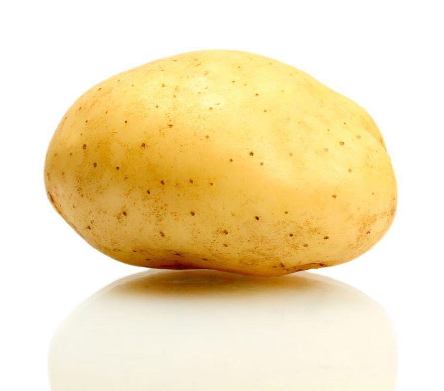 Картофель - популярный у любителей цветов корнеобразователь