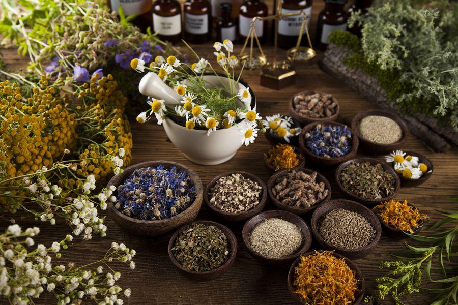 Лекарственные растения требуют и правильного хранения