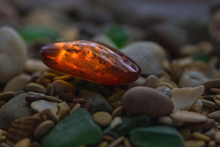 Янтарь содержит янтарную кислоту, которая присутствует во всех живых организмах