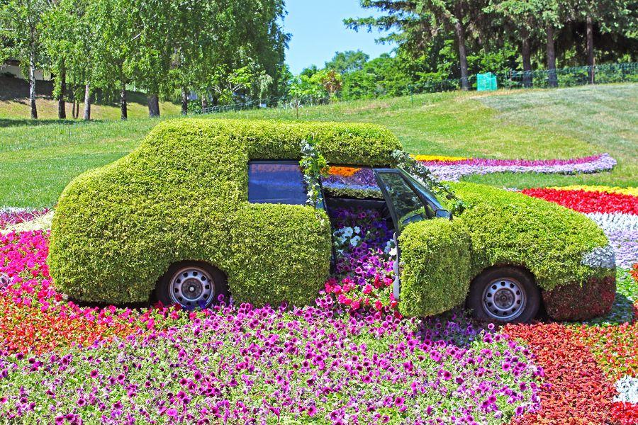 Принцип сухого ручья из цветов используют в парковом дизайне