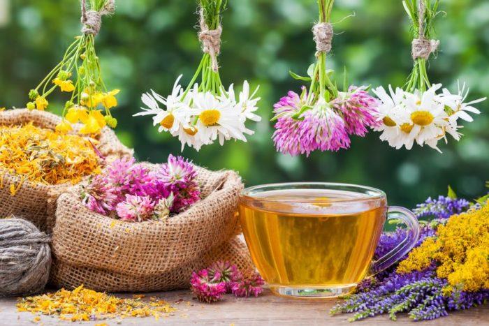 Лекарственные растения широко применяют как в промышленной фармации, так и в домашнем обиходе
