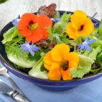 Съедобные цветы стали частью кухни многих народов мира