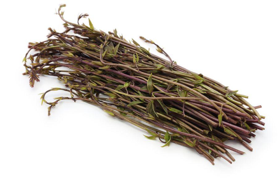 Лоза акебии применяется для плетения корзин или садовой мебели