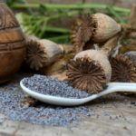 Семена мака - настоящая кладовая витаминов.