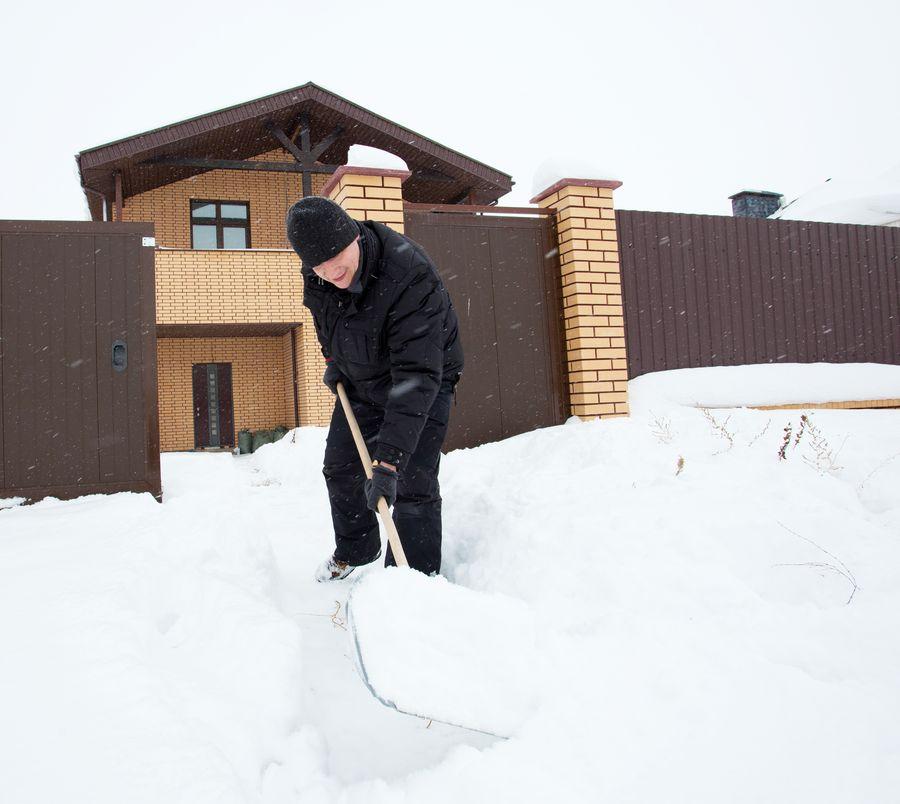 Убранный снег на участке может пригодится как превосходный теплоизоляционный материал для растений
