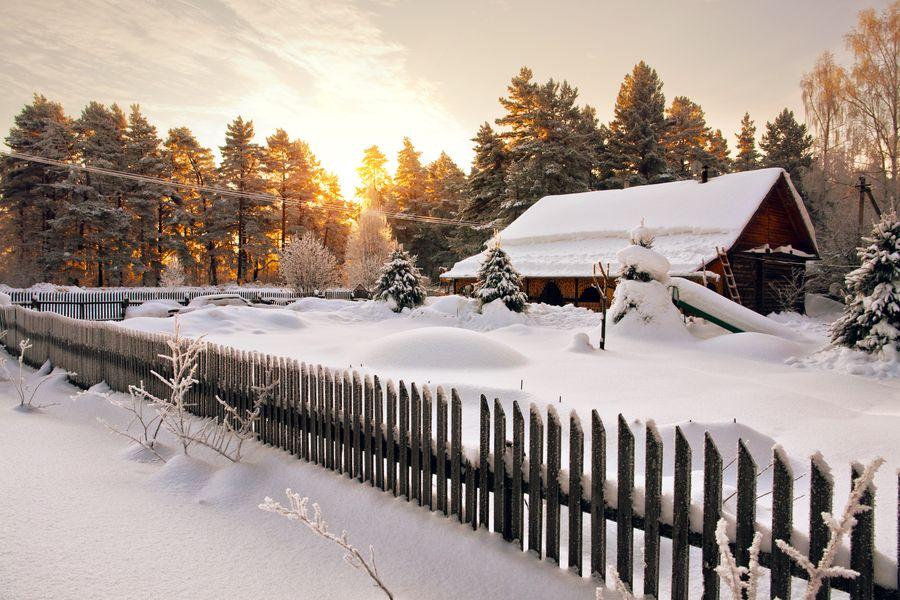 Композиция зимнего сада складывается также из того, что находится за его пределами