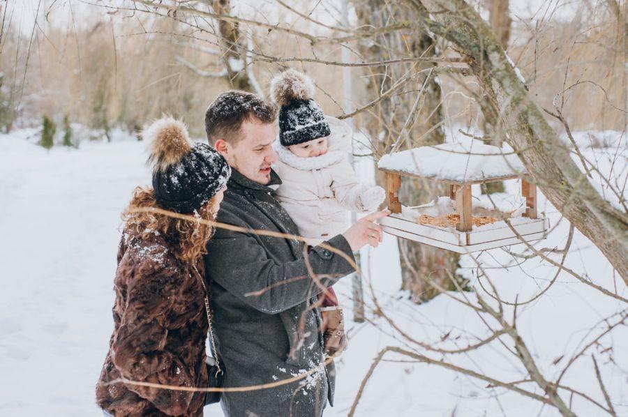 Кормушки для птиц - спасение для пернатых и воспитательный момент для детей