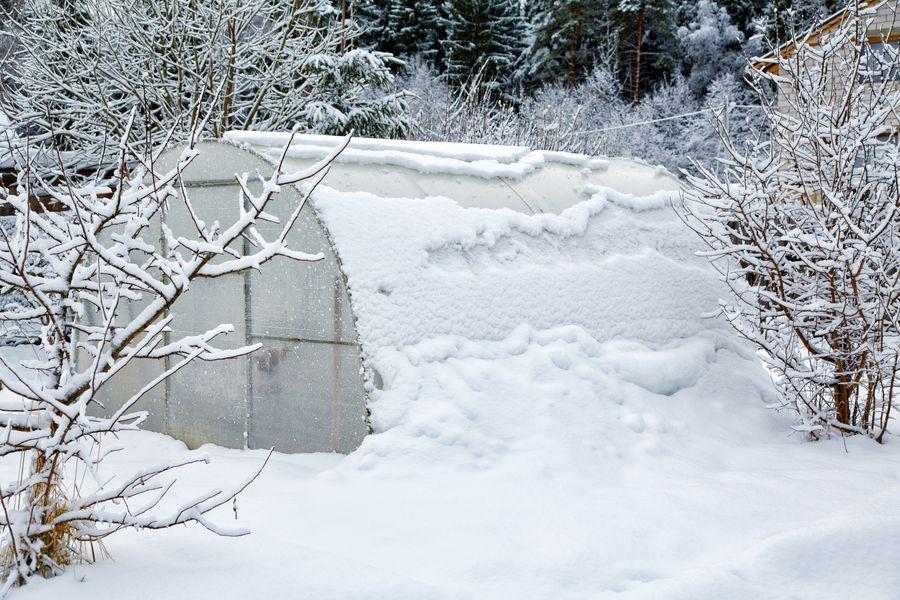 Снег в теплице нужен или нет?