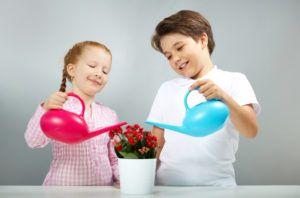 Комнатные цветы могут влиять на развитие детей