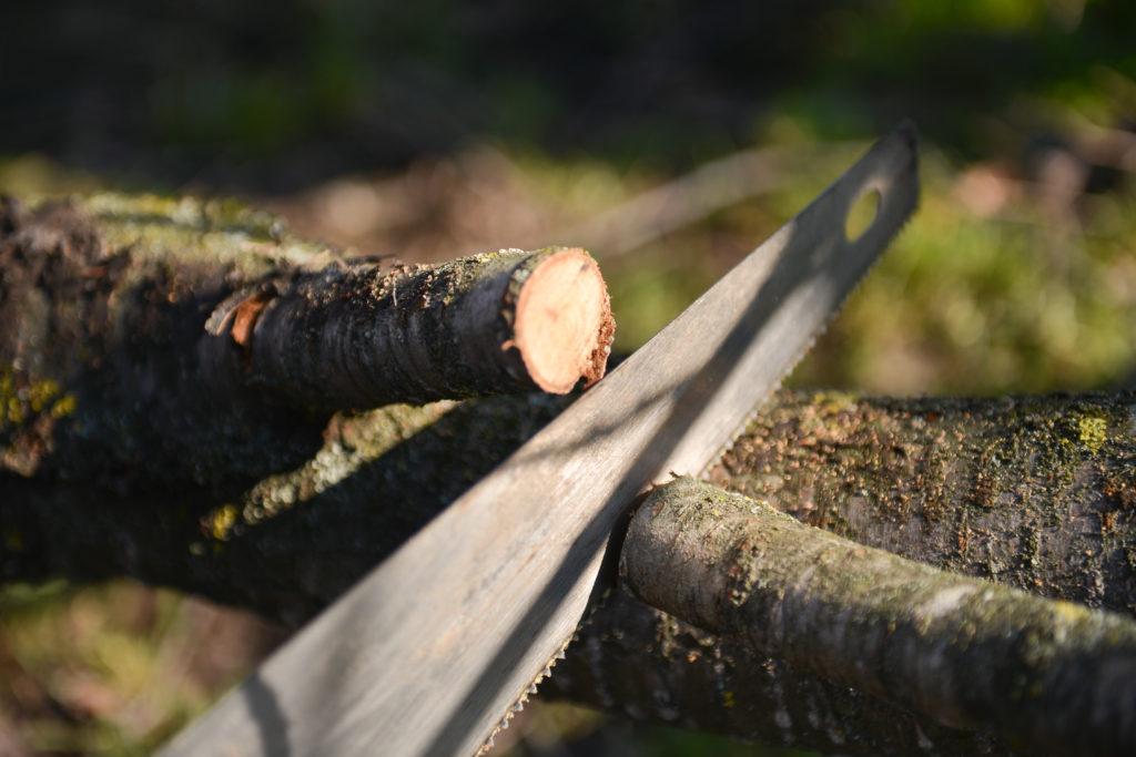 Лунный календарь садовода на апрель 2018 года определяет даты по обрезке и прививкам деревьям