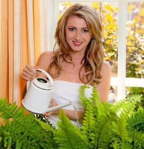 Комнатные папоротники - неприхотливые растения, с которыми справятся начинающие и занятые цветоводы