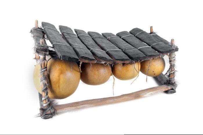 Тыква применяется для изготовления африканского музыкального инструмента