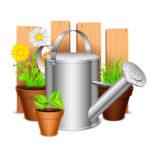 Полив растений имеет свои секреты и тонкости