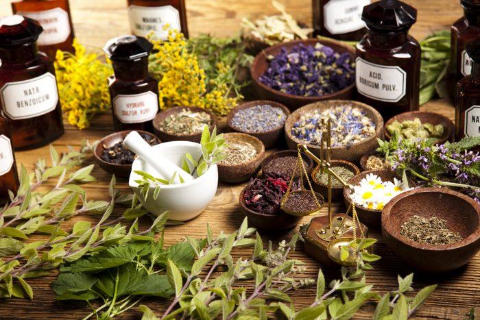 Лунный календарь садовода на июль указывает дни сбора лекарственных трав