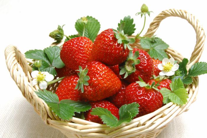Земляника - это ягода - царевна на вашем приусадебном участке!