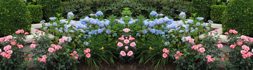 Создание цветущего сада в течении дачного сезона начинается с осенних грамотных агротехнических работ