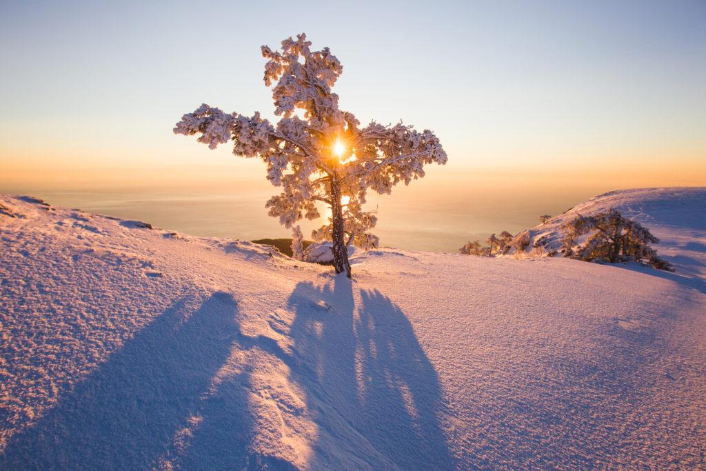 волшебный зимний восход