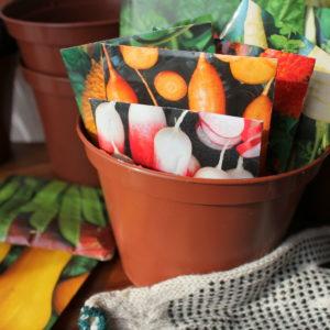 В январе необходимо начать закупку семян и садового инвентаря