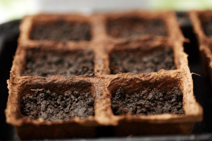Для рассады необходимо подготовить не только ящики, горшки, но и почву