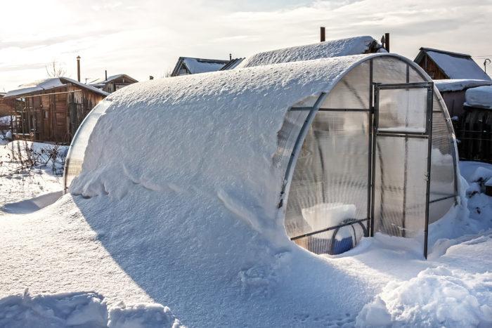 Заготовка снега для поликарбонатной теплице очень важна в зимний период