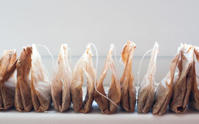 Семенам в чайных пакетиках поможет взойти питательная среда, которая есть в заварке