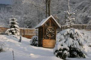 Февраль предсказывает погоду на лето