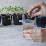 Гумат калия - удобрение для растений