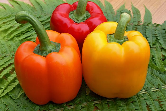 Кубовидно-призмовидные перцы имеют особенности при агротехнике выращивания