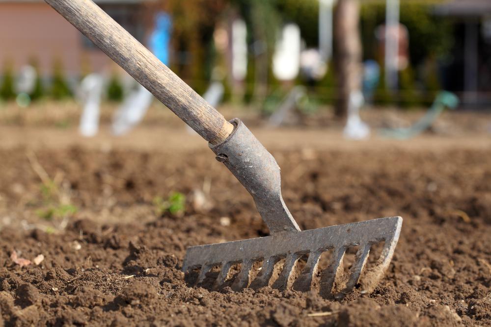 В начале мая необходимо успеть подготовить почву к посадке растений