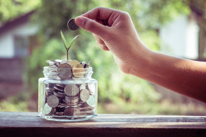 Ростки в банке с деньгами