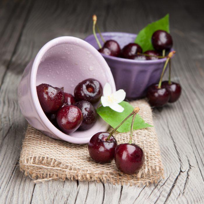 Вишня «Шоколадница»