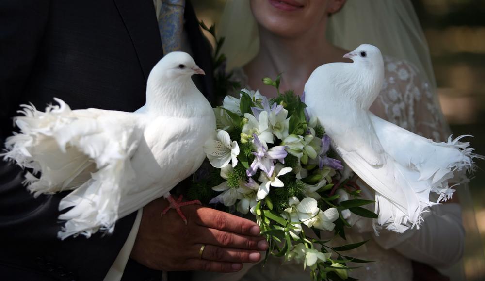 с 14 сентября наступает пора свадеб