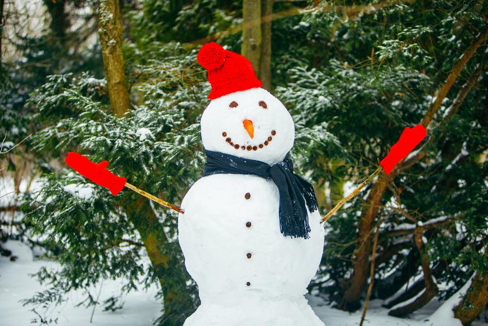 Декорации добавят вашему саду новогоднего настроения