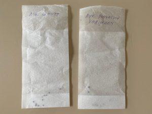Фильтр-пакетики для чая в целях  проращивания семян