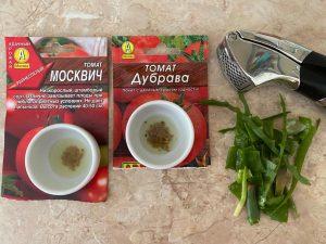 Замачивание семян томатов