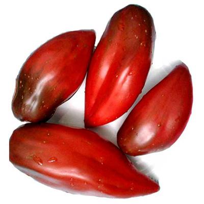 «Кубинский перцевидный» томат мясистый и очень вкусный
