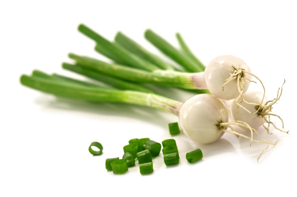 На зиму очень легко обеспечить себя зеленым луком