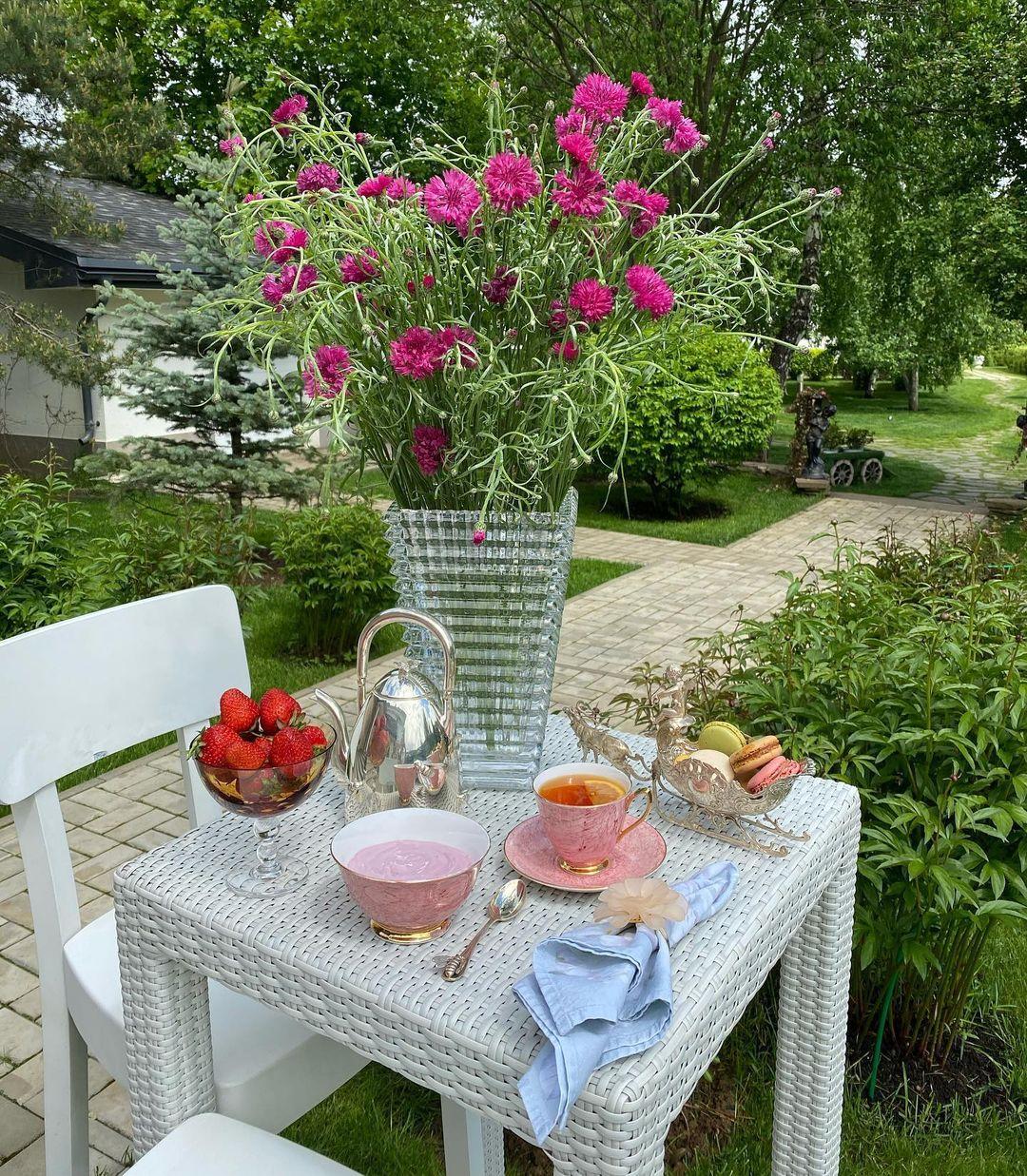 Садовые цветы, Завтраки Яны Рудковской