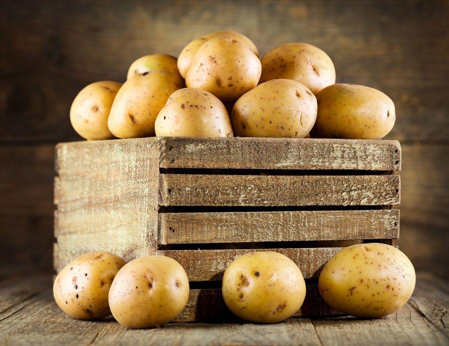 картошка невская