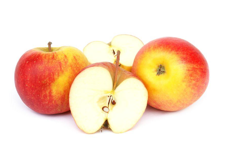 яблоня чемпион