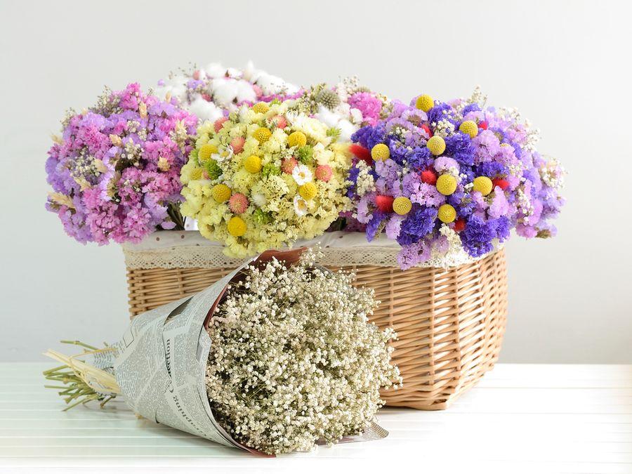 цветы сухоцветы