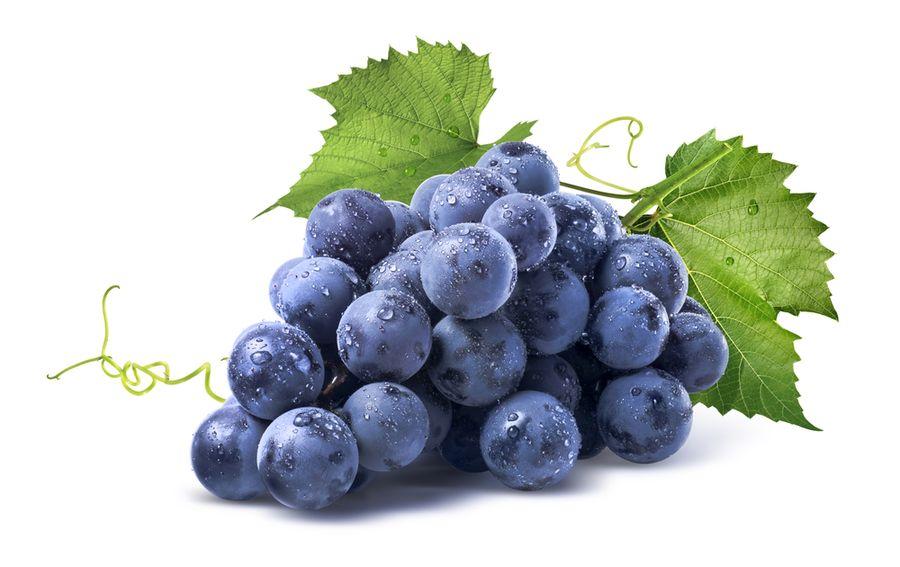 юкка виноград
