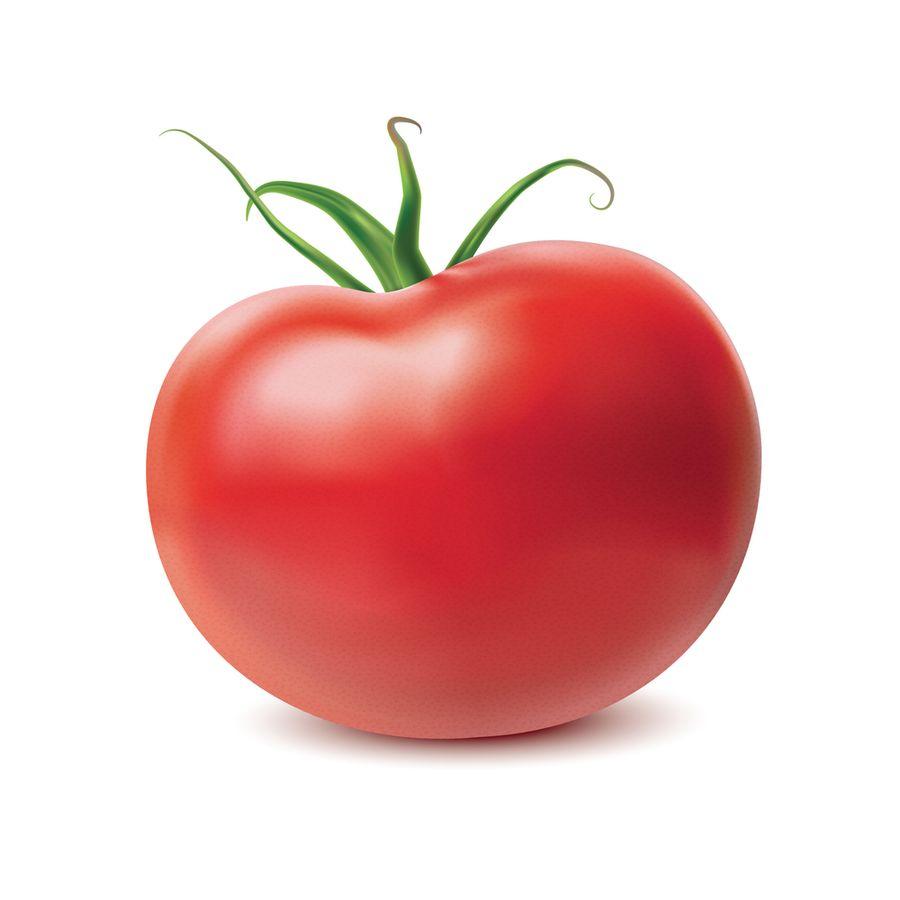 томат цетус