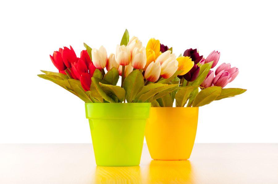 посадка тюльпанов в корзины
