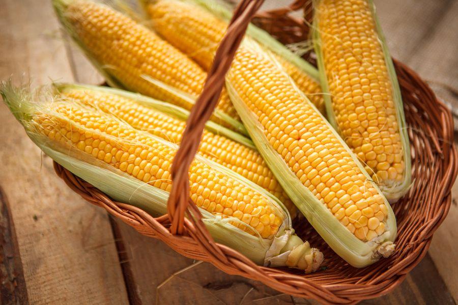 Как хранить кукурузу в домашних условиях